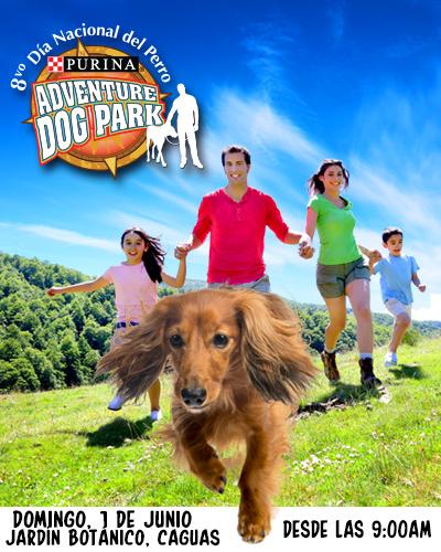 D a nacional del perro 2014 adventure dog park son de for Actividad de perros en el jardin botanico de caguas