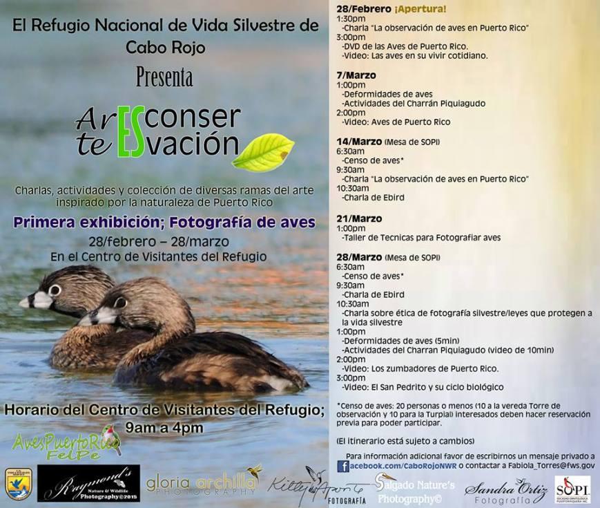 Arte es Conservación- Fotografía de Aves