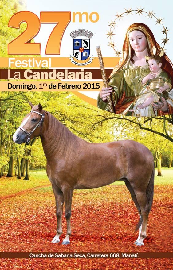 Festival de la Candelaria 2015 1