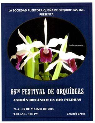 Festival de Orquídeas 2015