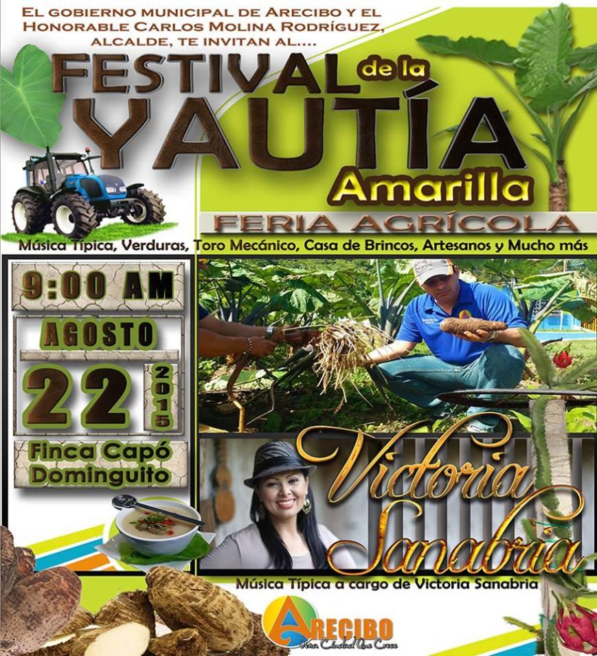 Festival de la Yautía Amarilla 2015