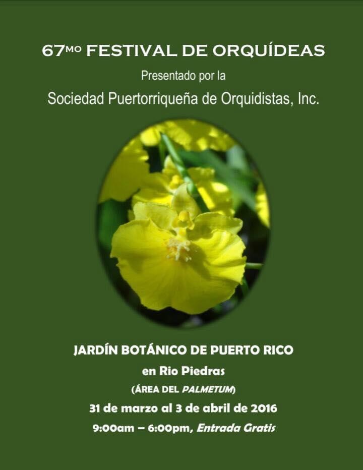 Festival de Orquídeas 2016