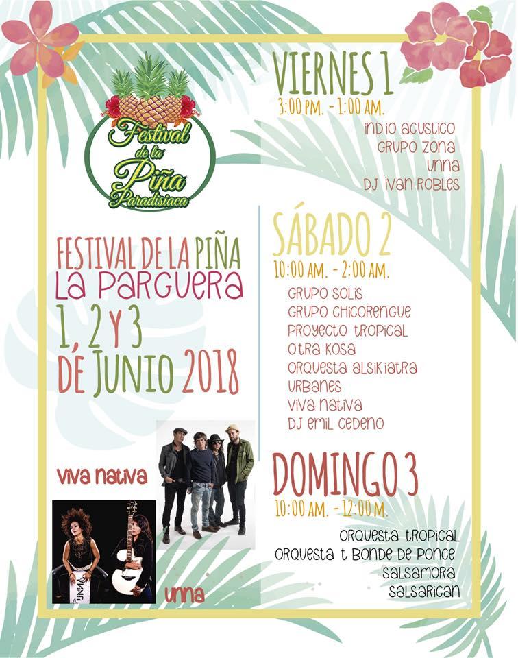 festival de la piña 1